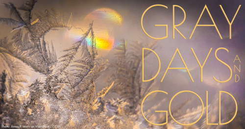 Gray Days and Gold February 2020