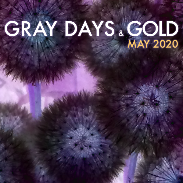 Gray Days and Gold May 2020