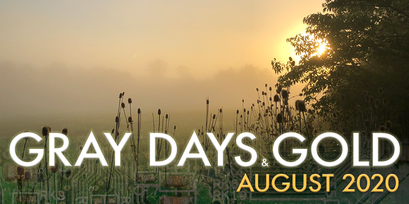 Gray Days and Gold August 2020