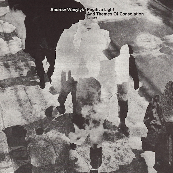 Andrew Wasylyk: Fugitive Light and Themes of Consolation