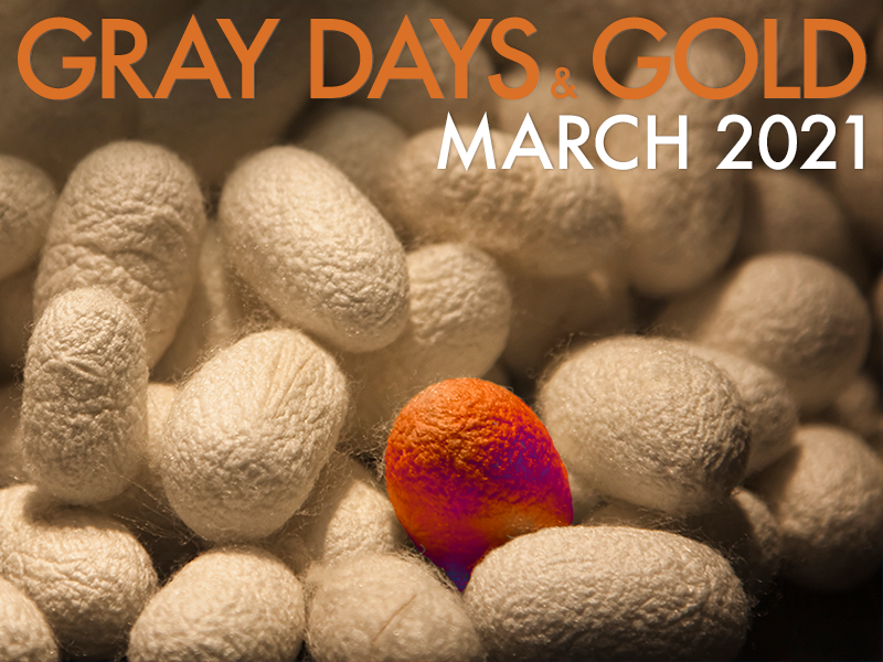 Gray Days and Gold March 2021